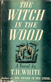 The Witch in the Wood (The Queen of Air and Darkness)